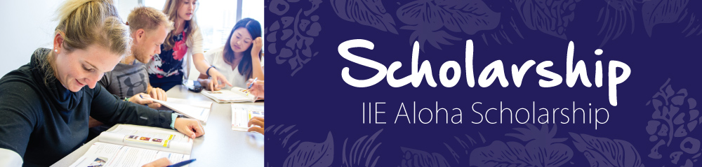 IIE Hawaii Scholarship system